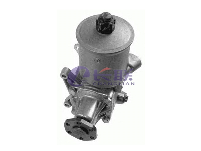 QSRPA194 Power Steering Pump