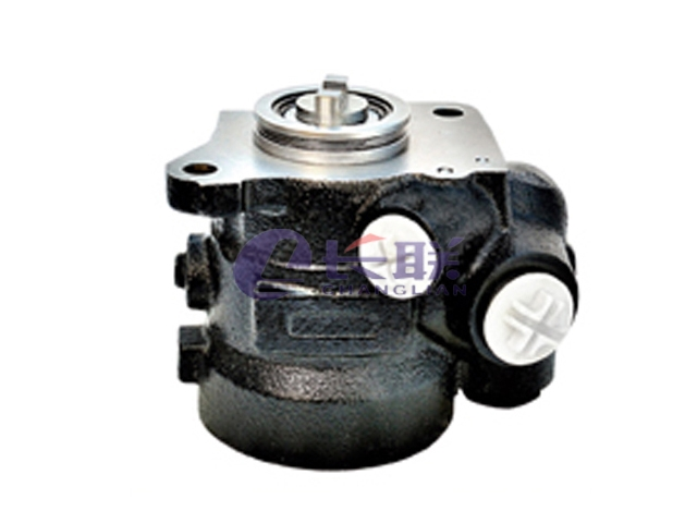 ZF7673955702 Power Steering Pump